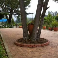 Jardines de estilo topical por Artekpro