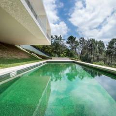 Pormenor da piscina: Piscinas de jardim  por João Boullosa