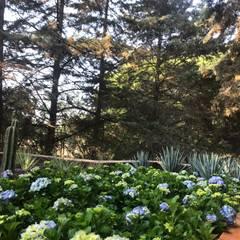 Jardines de estilo  por ANVERSO