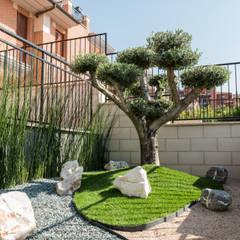 Olivo topiario, pietre e ghiaia Giardino Zen in stile di AbitoVerde