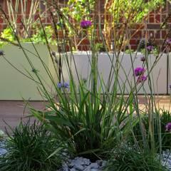 Native planting:  Roof by MyLandscapes Garden Design