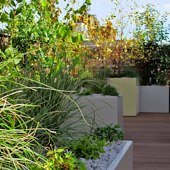 Holborn rooftop:  Roof by MyLandscapes Garden Design
