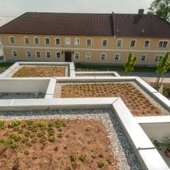 Auszugshaus in Wimpassing, Österreich:  Dach von lobmaier architekten zt gmbh
