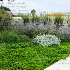 Garden by Alessandro Lutri - Agronomo Paesaggista