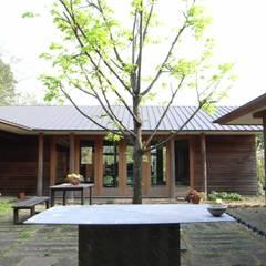 中庭: 株式会社高野設計工房が手掛けた庭です。