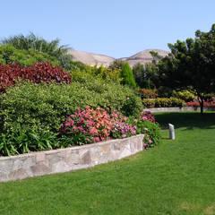 Paisajismo Campo-Playa, Lima Perú: Jardines de estilo  por DECOGARDEN: PAISAJISMO Y JARDINERÍA, Tropical