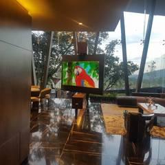 Sistema de video: Salas de estilo  por Ataxia Servicios
