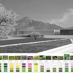 สวนแบบเซน by Carlos Gallego
