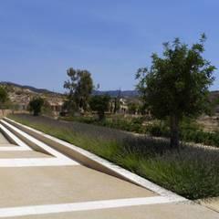 حديقة Zen تنفيذ Carlos Gallego,