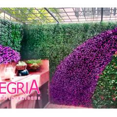 Follaje Sintético : Jardines en la fachada de estilo  por Alegria Diseño de Interiores