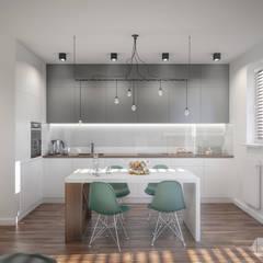 Projekt mieszkania 50m2: styl , w kategorii Kuchnia zaprojektowany przez hexaform