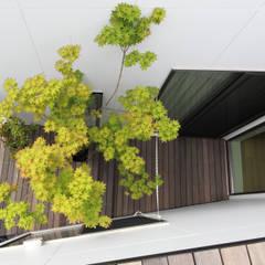 ルーフバルコニーよりテラスを見下ろす|府中の家Ⅱ: U建築設計室が手掛けたテラス・ベランダです。