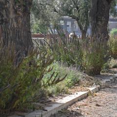 VARIOS: Jardines de estilo  de Marta Puig de la Bellacasa