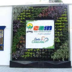 Jardín Vertical en Fachada: Jardines frontales de estilo  por Globo Natural