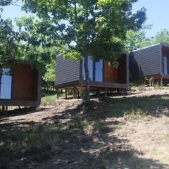 منزل جاهز للتركيب تنفيذ Black Oak Company group|( Ooty. )( Timberman )( Growing )