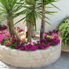 roccette della murgia per arredo giardino: Giardino in stile  di Trani Gold Stone - la pietra di Trani
