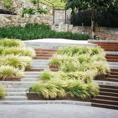 Un jardín donde el cliente se pueda sentir en un oasis particular.: Escaleras de estilo  por Marcia Lenz Paisajismo