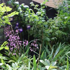 Studio Tuin: rustieke & brocante Tuin door Andrew van Egmond (ontwerp van tuin en landschap)