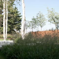 Polder karakteristieken: moderne Tuin door Andrew van Egmond (ontwerp van tuin en landschap)