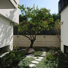 庭院與梅樹:  石頭庭院 by 黃耀德建築師事務所  Adermark Design Studio