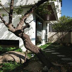梅與石:  石頭庭院 by 黃耀德建築師事務所  Adermark Design Studio