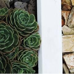Jardines de piedras de estilo  por Andrés Hincapíe Arquitectos  A H A
