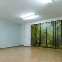 Sala: Espacios comerciales de estilo  de E. G. Mondragón