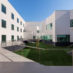 Fotógrafo profissional - Porto, Portugal: Escolas  por Alessandro Guimaraes Photography