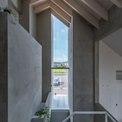 Windows  by 武藤圭太郎建築設計事務所