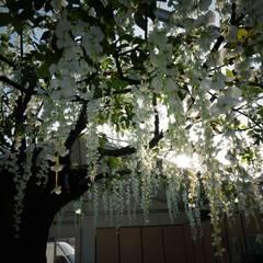 Paysagiste de l'événementiel: Jardin de style  par Green Lab Design, Asiatique