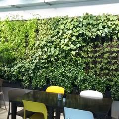 Jasa pembuatan taman menempel dinding di banjarmasin banjarbaru martapura: Dinding oleh Jasa tukang taman gresik, Tropis Bambu Green