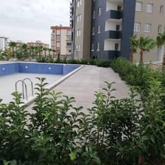 Notilus Peyzaj Tasarım ve Uygulama – Yüzme havuzu:  tarz Bahçe