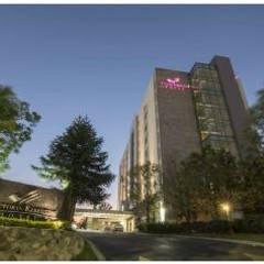 Hotel Victoria Ejecutivo: Condominios de estilo  por ABA Depot