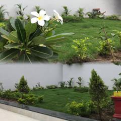 Brijdham (Bungalow):  Garden by Raj Creation