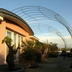 Treilles en façade : Terrasse de style  par FRANCIS BENINCA