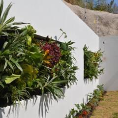 Jardín Bosque Real: Jardines de estilo  por Green Gallery