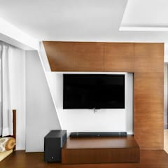 RECENT SHOT DONE FOR ARISTO INDIA:  Media room by Art Home Photography
