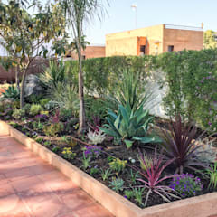 Tropical style gardens by Nosaltres Toquem Fusta S.L. Tropical