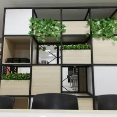 Zona thinking boxes: Estudios y despachos de estilo  por Decó ambientes a la medida
