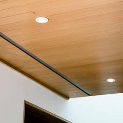 Duela en techo: Paredes de estilo  por Lippe carpintería & ebanistería