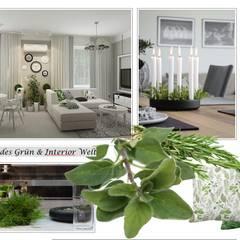 Aroma space design:  Wohnzimmer von NK-Line