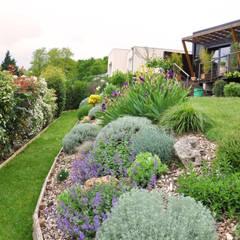 JARDIN EN ESSONNE - Un jardin romantique, à l'anglaise: Jardin de style  par  Sophie Durin | Empreinte Paysagère, Moderne Bois Effet bois