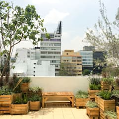 Terrazas de estilo  por Boceto Arquitectos Paisajistas, Moderno Madera Acabado en madera