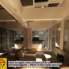 General Renovation of Duplex Penthouse/Reforma Geral de Cobertura Duplex: Telhados  por TC Arquitetura por Tereza Costa