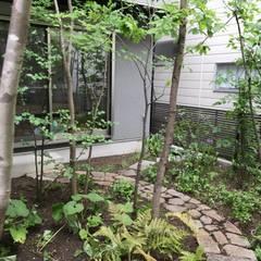 Taman zen by 庭 遊庵