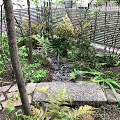 حديقة Zen تنفيذ 庭 遊庵, أسيوي