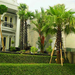 Jardines japoneses de estilo  de Tukang Taman Surabaya - flamboyanasri