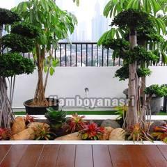 25 Koleksi Desain Tukang Taman Surabaya Terindah :  Pondok taman by Tukang Taman Surabaya - flamboyanasri