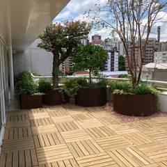 Jardines de invierno rústicos de Belas Artes Estruturas Avançadas Rústico Hierro/Acero