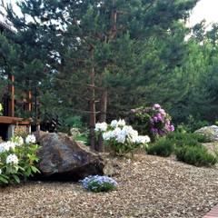 ПОЛЕТ ШМЕЛЯ: Сады в . Автор – GREENS архитектурно-ландшафтное бюро